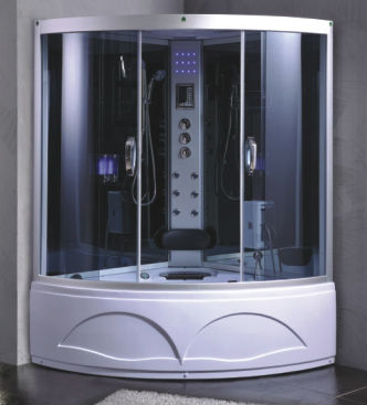 computer controlled steam room with jacuzzi(8008)