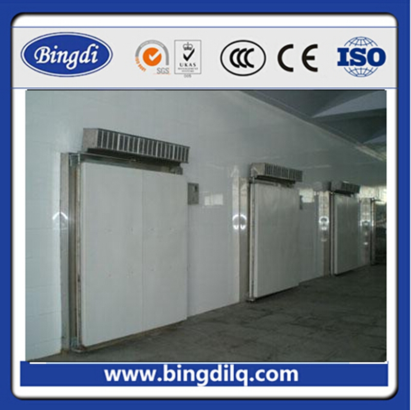 low tempreture cold storage racking system pvc strip curtain room for meat