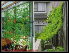PE garden trellis climbing net, cucumber or pea or bean grow supporting net