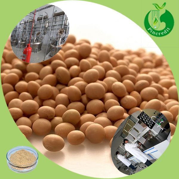 Hot Supply Natural Soybean Extract / Soybean Oil Extraction Plant