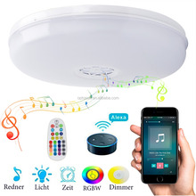 Wifi RGB+W Multi Color Ceiling Light Indoor Lighting LED Modern Ceiling Light