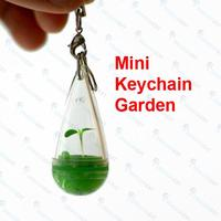 Diy Mini Pocket Plant Key Chain Portable Home Growing Plant Garden