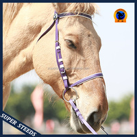 Hot selling top quality best choice strong PVC horse racing bridles