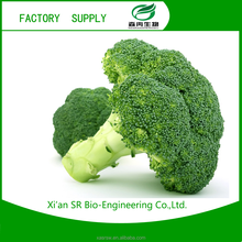 SR China Suppier Broccoli Extract Sulforaphane 1%-98%/Fenugreek Extract Powder,Placenta Extract Powder