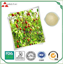 Natural Tea seed extract powder saponin 95% 98%/Camellia Oleifera Seed Extract
