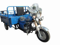 Hot sale closed cargo three wheeler covered tricycle