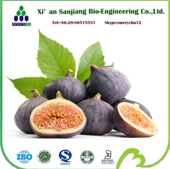 free sample fruit powder Natural fig powder