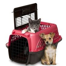 Two Door Top Load Outdoor Dog Kennel as Pet Carrier Factory Direct