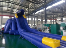 christmas inflatable slide, giant inflatable water slide,giant inflatable water slide for adult