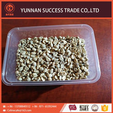 Factory high grade raw green coffee beans