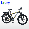 Magnesium Alloy Wheel Full Suspension Electric Mountain Bike 36v350w A6