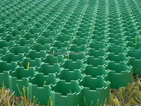 plastic paving grid, paving grid hdpe, grass protection paver