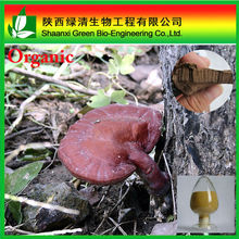 Natural ganoderma lucidum extract bulk powder with GMP manufacture