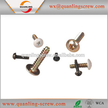 Self Tapping Trilobular Thread Lock Screw