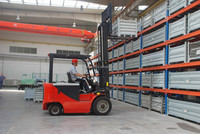 2.5 Ton and 3 Ton Mini Hand Manual Forklift with Diesel Engine