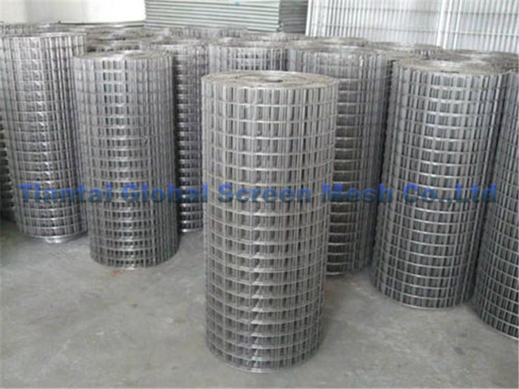 Excellent quality various material galvanized welded wire mesh