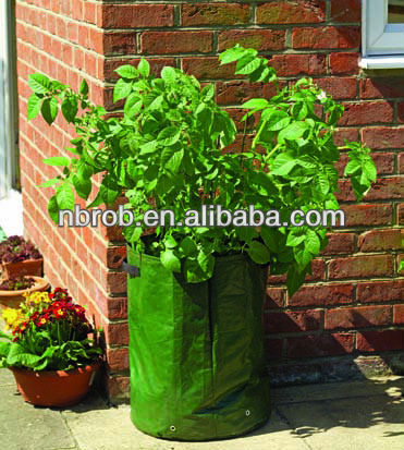 Plastic potato grow bag