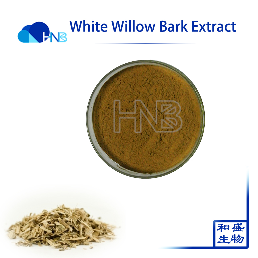 High Quality Natural White Willow Extract/White Willow Bark/Salix Babyloni