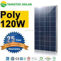 China Manufacturer Yangtze poly solar panels 120w