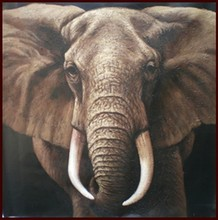 Vivid Color 100% Handmade Animal Oil Painting Of Elephants With Canvas