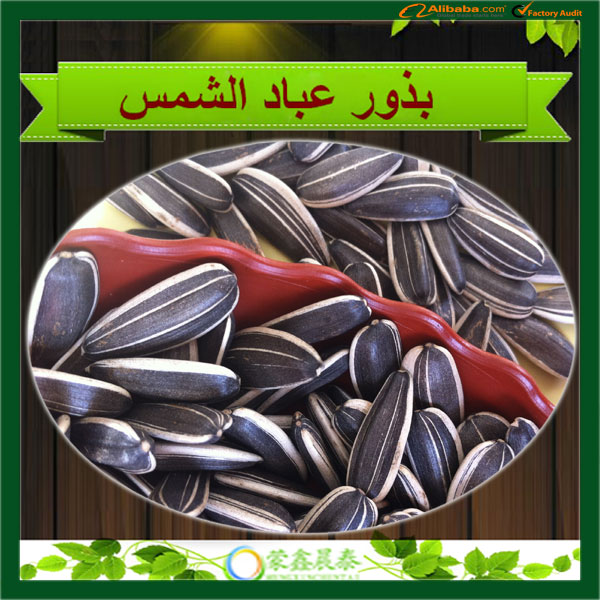 Supply The Good Quality Black Eating Sunflower Seeds For Roasted