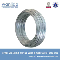 Electro G . I . Wire & GI Binding Wire & Annealed Binding Wire