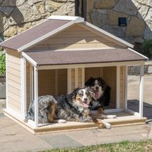 Good quality dog house factory wooden frame dog house