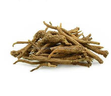 Baical Skullcap Root from Scutellaria baicalensis Georgi,natural herb's root
