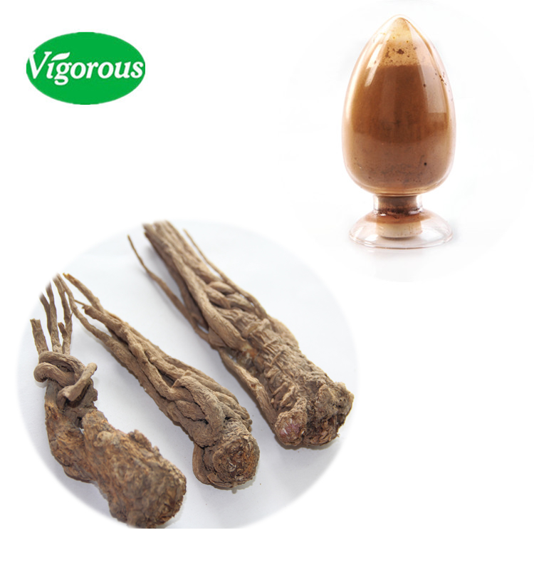 Chinese Herb angelica root extract powder (Dong Quai Extract)