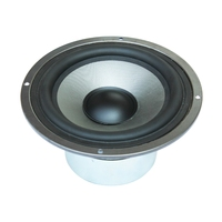 hot selling 10 inch 150W professional audio speaker & horn & woofer for audio player