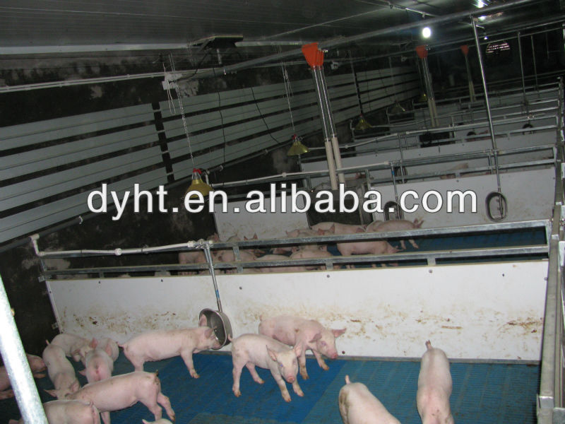 automatic pig farm in india