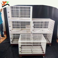 Environmental Strong PP Pet Cage With Colours