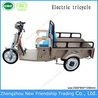 Street legal ce approved electric utility tricycle