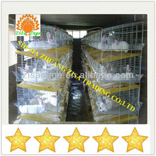 hot dip galvanized 12 rabbits cage farm with clean dung tray