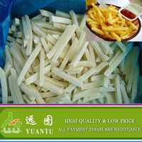 Frozen Holland Potato Chips/Frozen French Fries On Sale