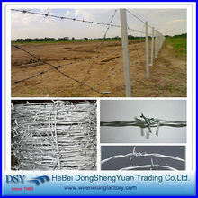 Barbed Wire/galvanized barbed wire fence/electro galvanized barbed wire factory