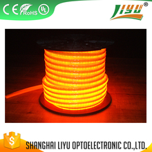 Professional led strip light wholesale price