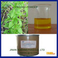 GMP & ISO Approved Fresh Oregano Essential Oil