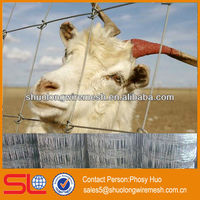 Best sell!Fence sheep netting,poultry wire fence square hole