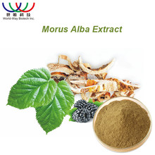 free sample ! China wholesale 100% natural pain killer pure mulberry leaf extract DNJ