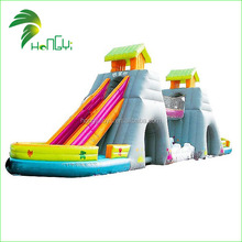 Newest Commercial PVC OEM Accepted Hippo Inflatable Water Slide