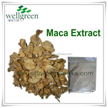 maca root/maca/maca powder