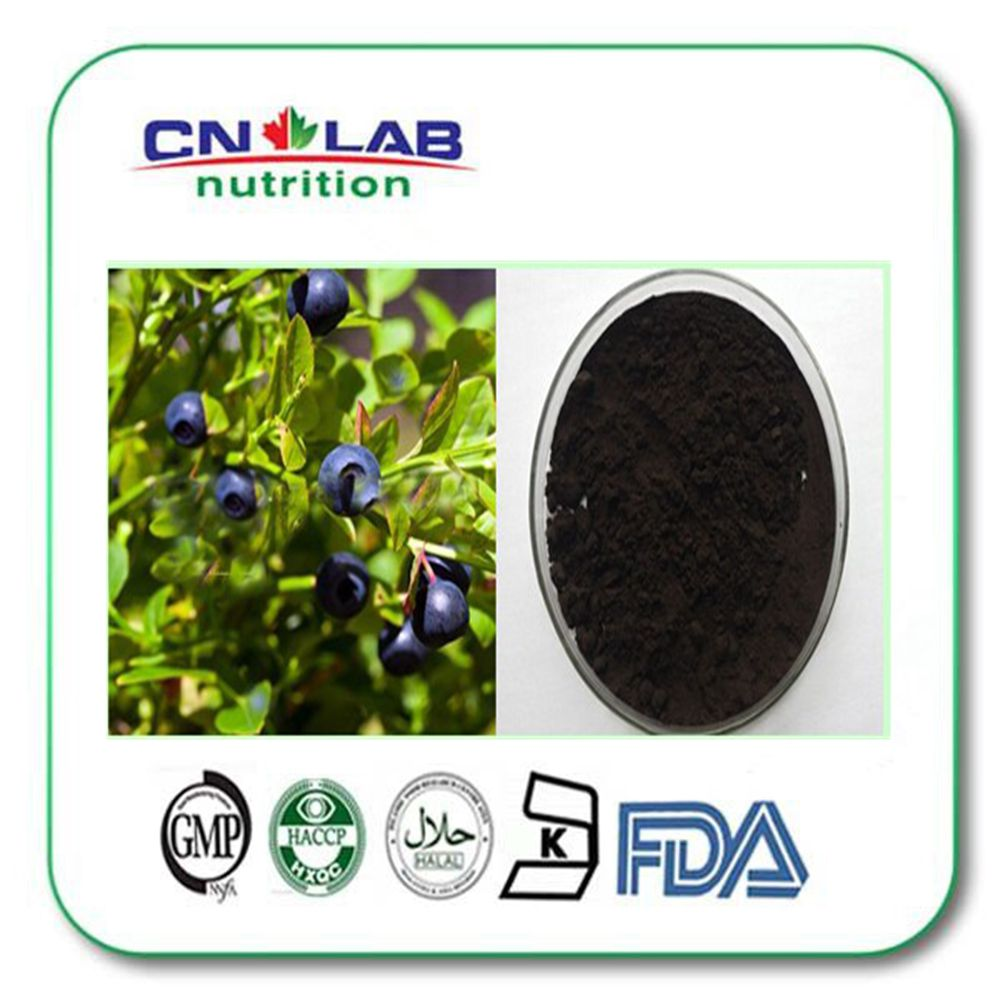 New dried blueberry in China, iqf cultivated & wild frozen blueberries