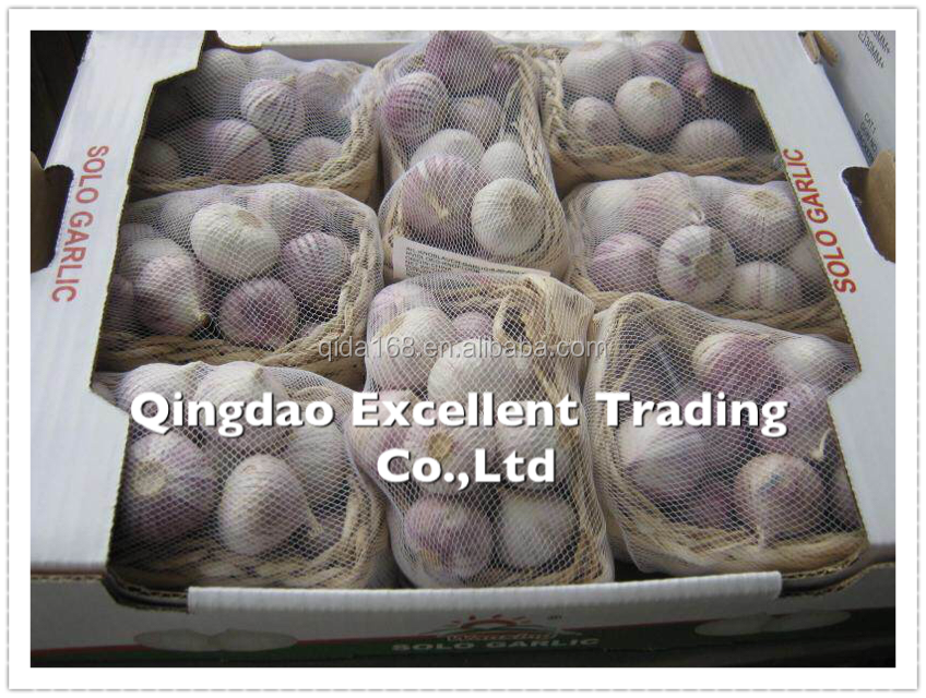 2016 BEST PRICE HIGH QUALITY CHINESE SOLO GARLIC