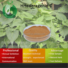 Ivy Leaf Extract Hederacoside c/Hedera Helix Extract Hederagenin Powder/Hederagenin C