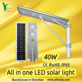 Hot selling solar lights for garden/outdoor decorations lawn with IP65 PASSED