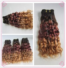 Hot sale 3pcs/lot 100% virgin Brazilian Human hair three tone water wave hair weaves ombre remy hair weaves