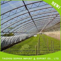 Factory manufacture various PE film UV protection greenhouse film for agriculture