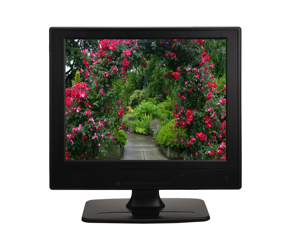 Brand New 12.1 pollice TFT LCD TV Tv LCD Display - ANKUX Tech Co., Ltd