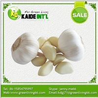 New Products On China Market China Fresh Natural Garlic